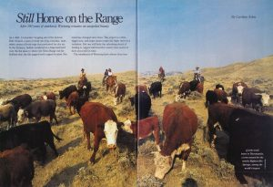 """""""Still Home on the Range; After 100 years of statehood, Wyoming remains an unspoiled beauty"""", Endless Vacations."""